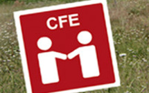 Centre de Formalités des Entreprises (CFE)
